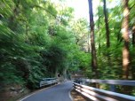 Italian Country Road