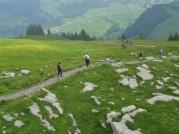 Trail to Wildkirchli