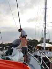 Sail Removal