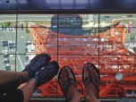 Standing on the Glass Floor
