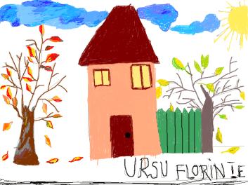 ursu florin 1e
