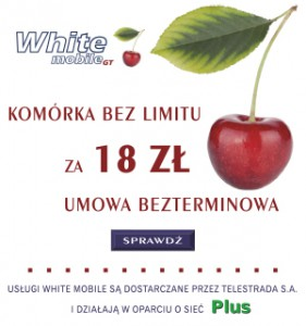 banerek White mobile krzywe copy