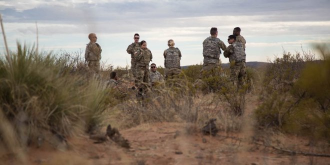 We found this rare animal roaming Fort Bliss' training grounds … – Business Insider
