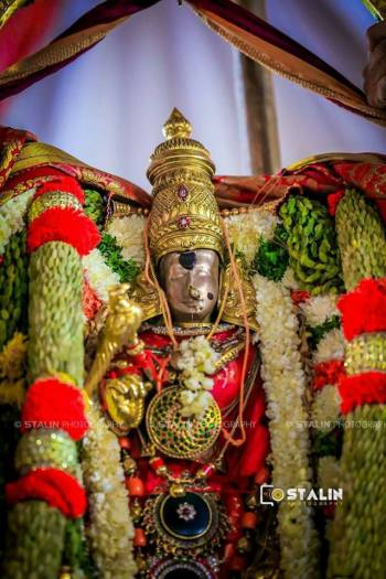 madurai meenakshi amman kalyanotsavam (1)