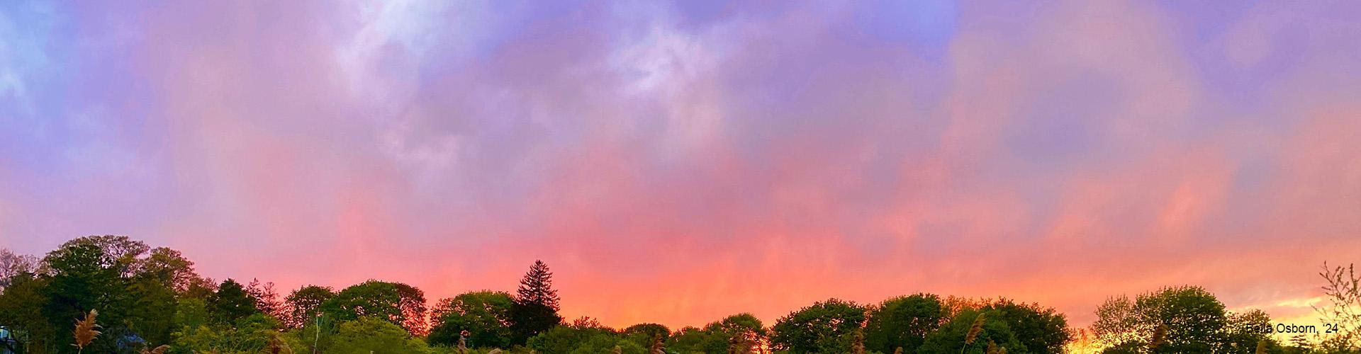 Bella Osborn – Sunset