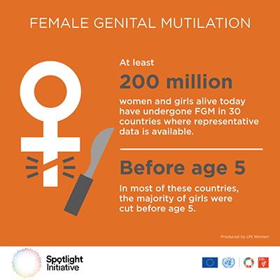 Ed FGM infographic