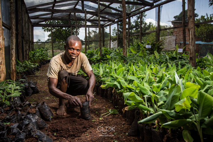 Kenya_Farmer-20
