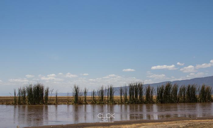 Lake_Natron-13
