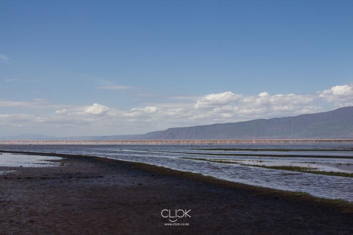 Lake_Natron-2