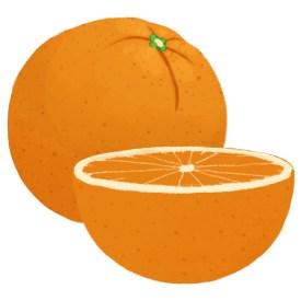 Fr_Food Vocab orange