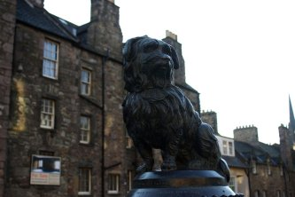 Greyfriars Bobby.  And more from Edinburgh.