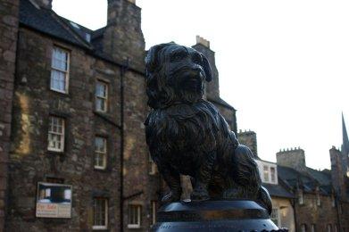 Greyfriars Bobby. And more from Edinburgh.