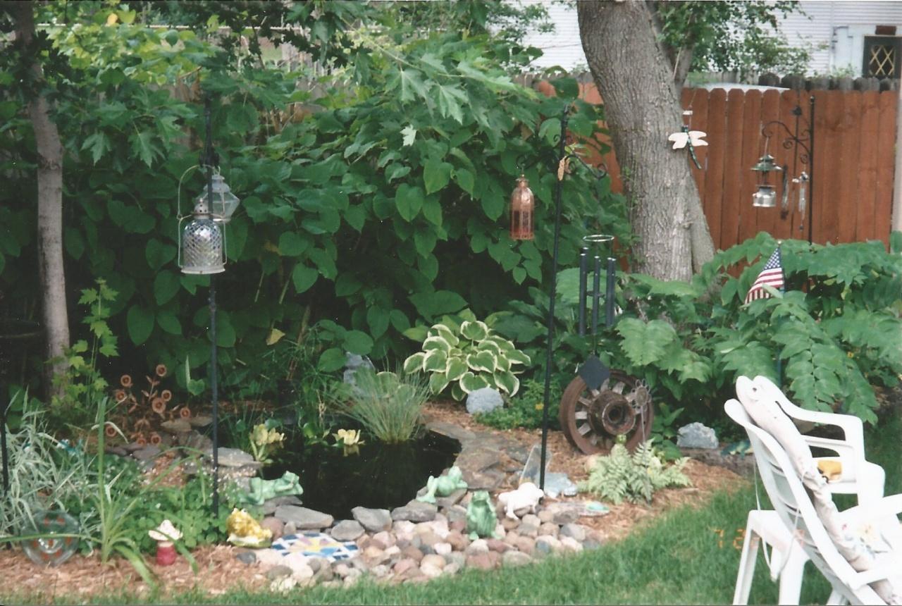 backyard pond and garden