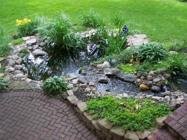 pond and waterfall by patio
