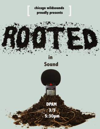 Rooted in Sound - fb