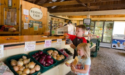 Local Farms and Markets