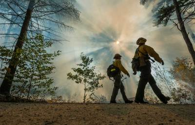 Forest Service firefighters working with controlled burns