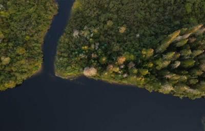 Aerial Wetlands