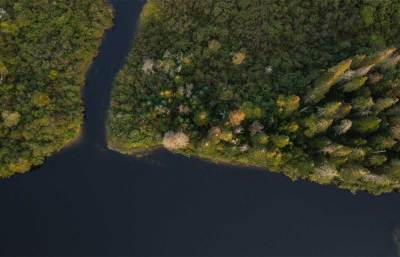 wetlands aerial new hampshire
