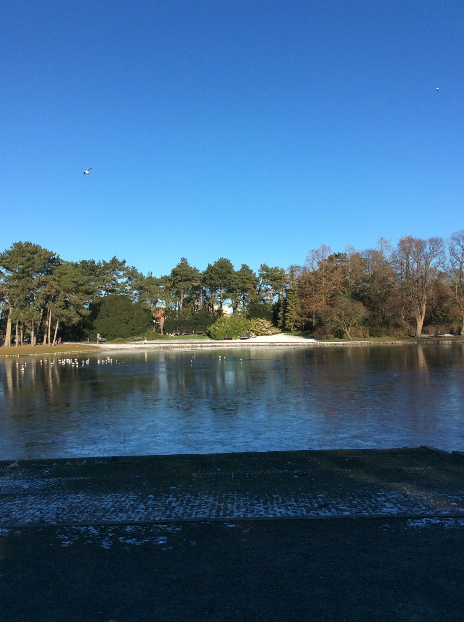 Walking in 19th century: the parks in Malmö