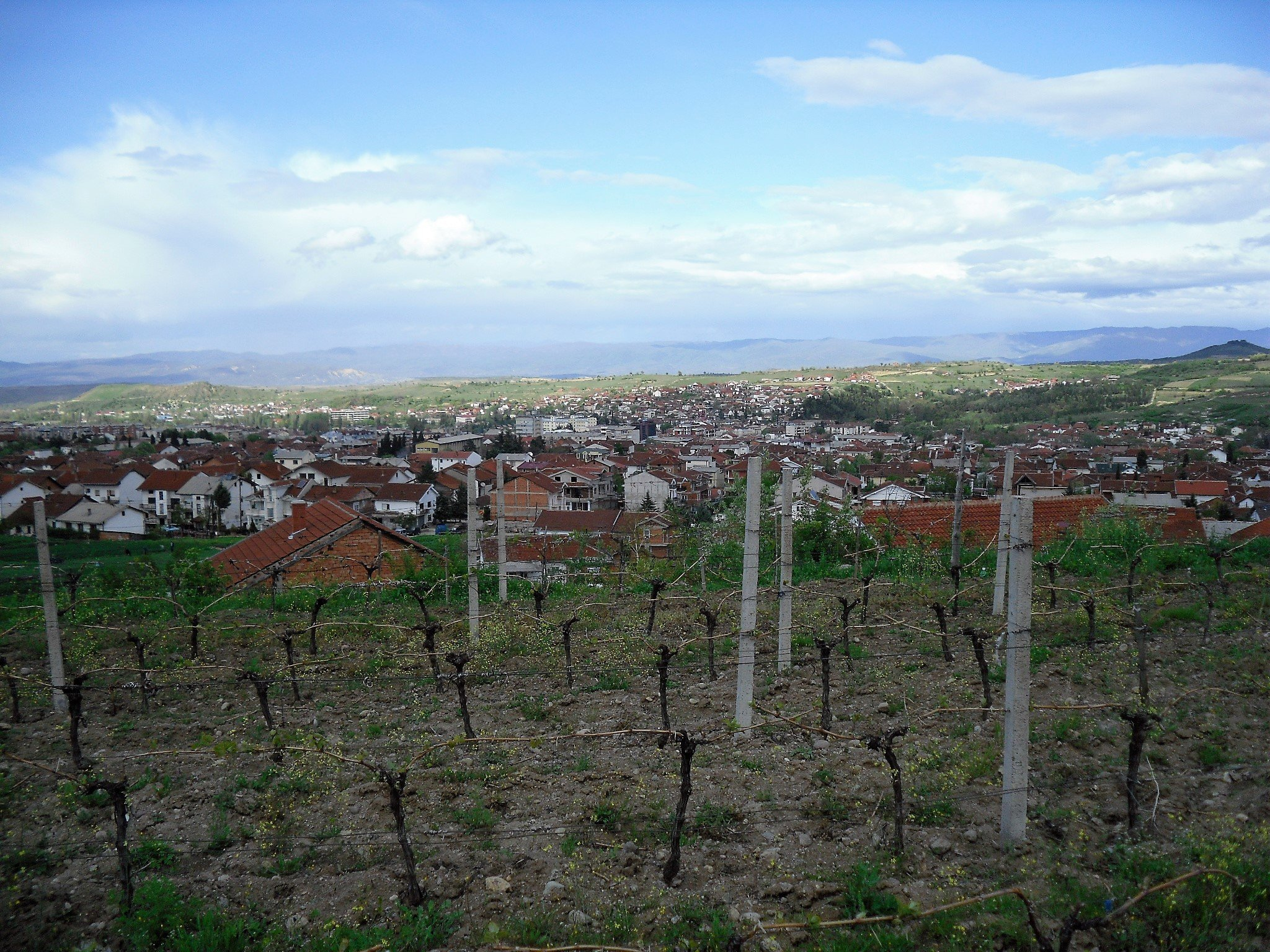 Kavadarci: the place for wine lovers