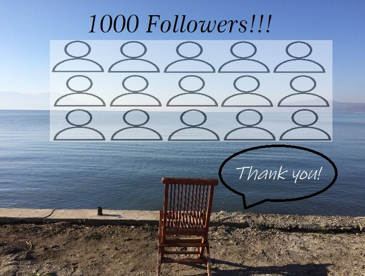 1000 followers for the blog now