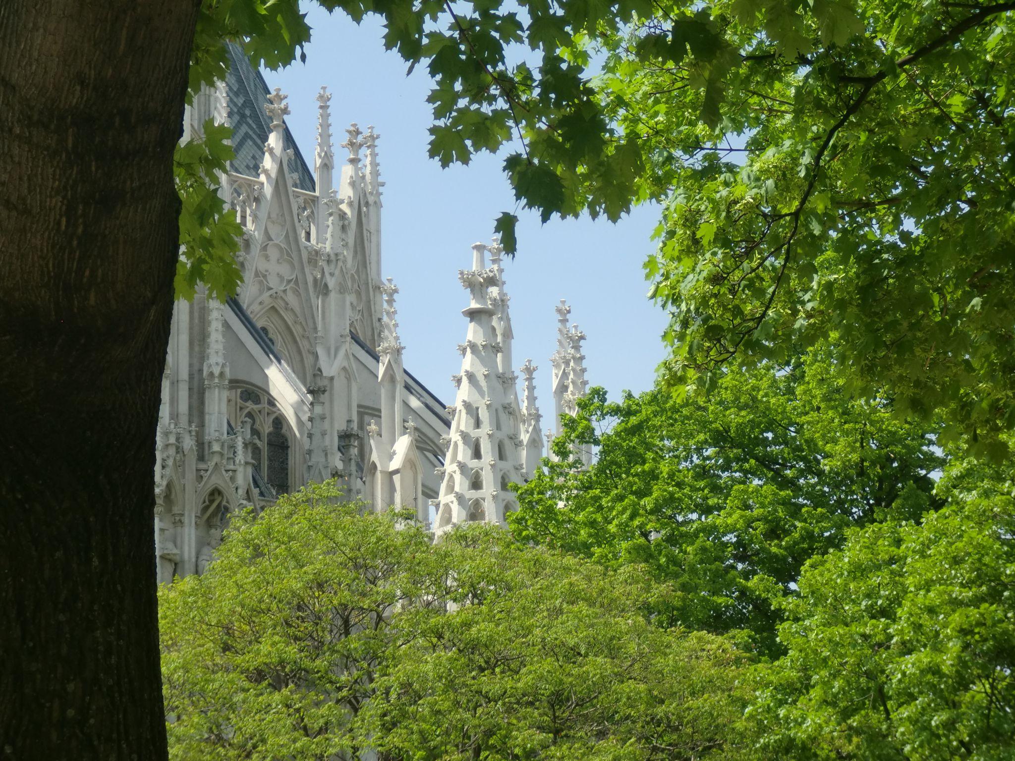 Vienna cathedral 59 1440x1080 - Vienna: elegant beauty
