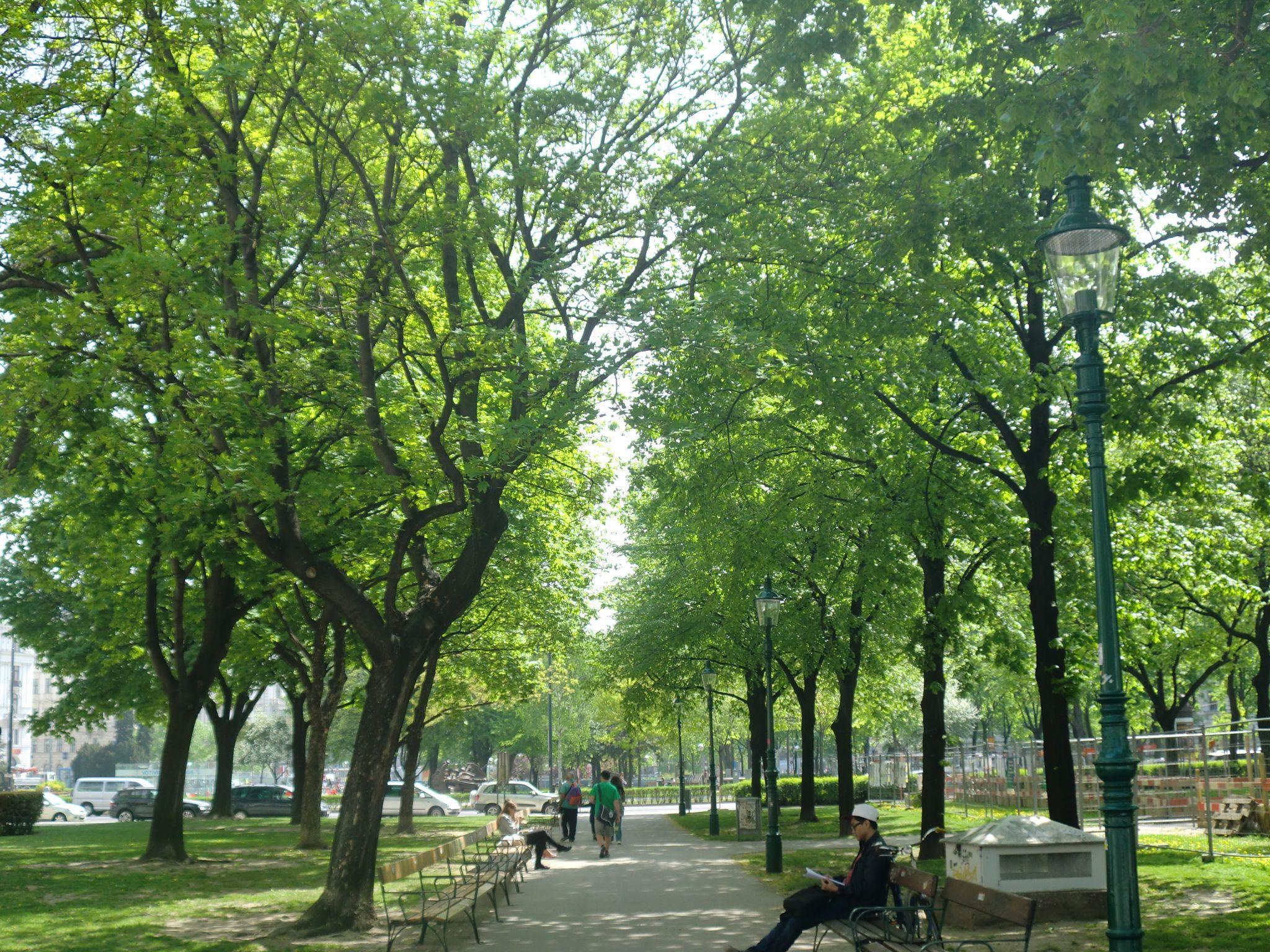 Vienna park 2 1440x1080 - Vienna: elegant beauty
