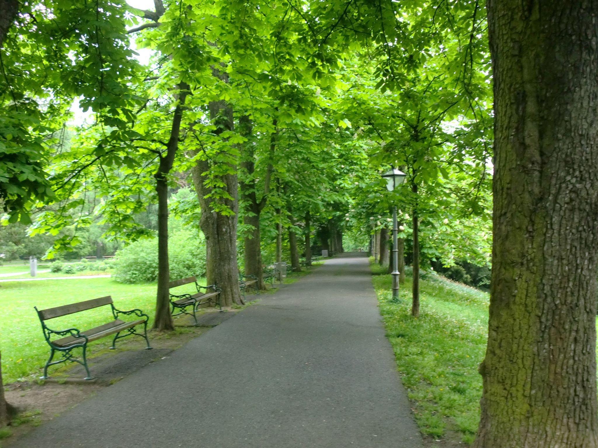 Vienna park 28 1440x1080 - Vienna: elegant beauty