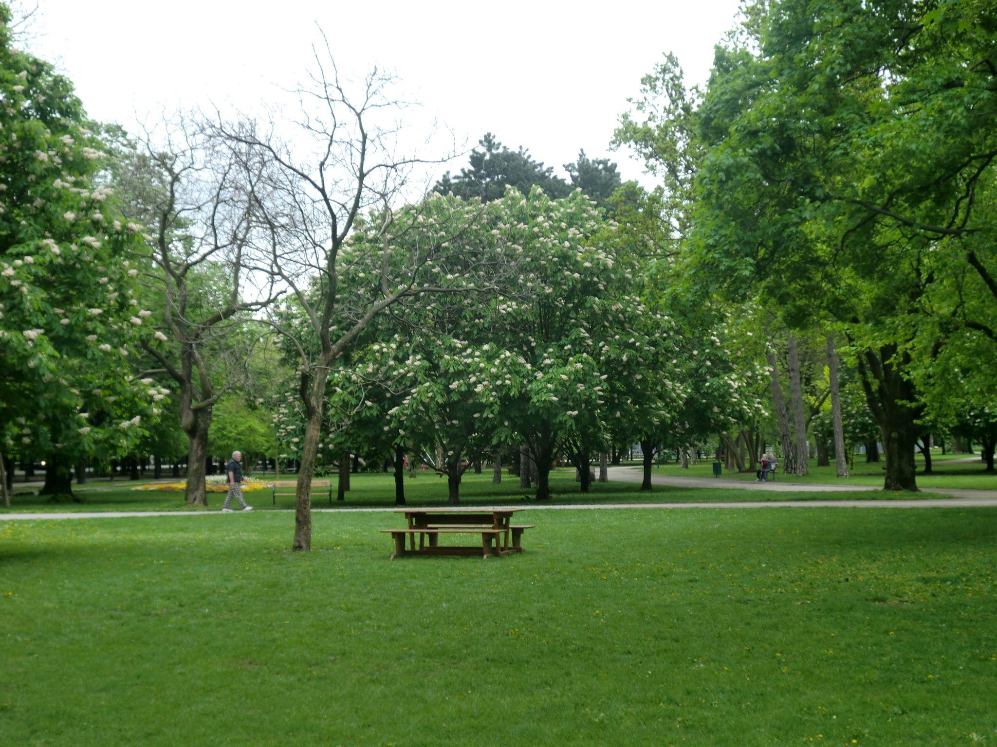 Vienna park 45 1440x1080 - Vienna: elegant beauty