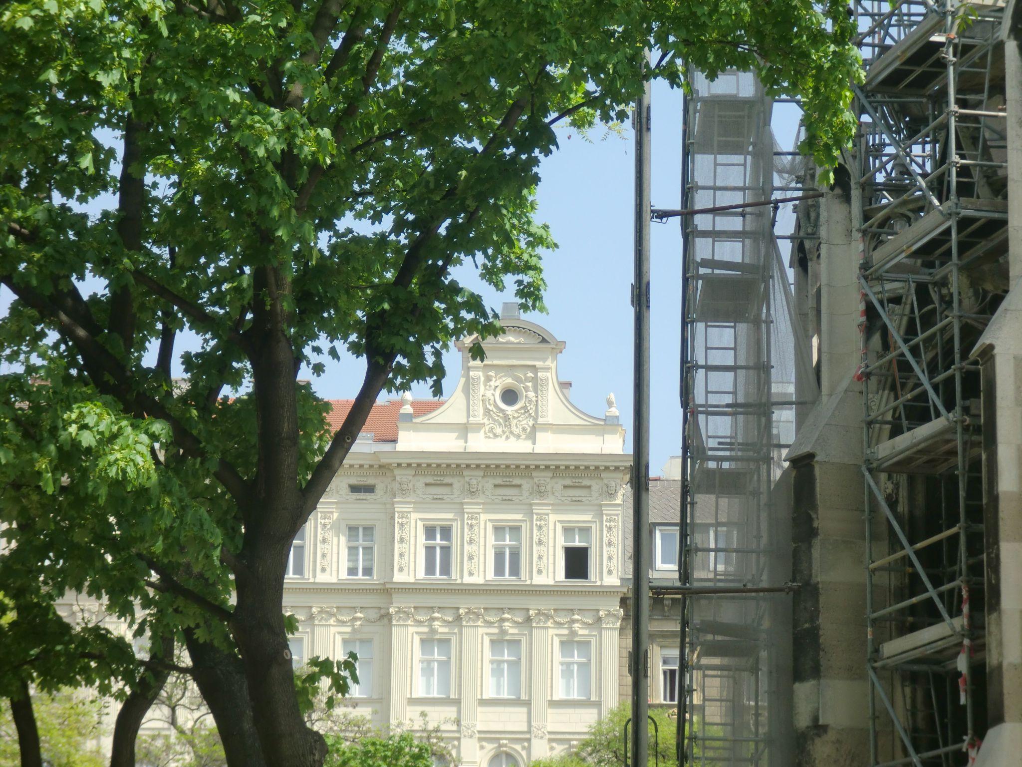 Vienna park 5 1440x1080 - Vienna: elegant beauty