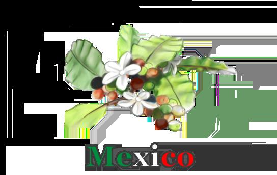 Mexico_Vorschau