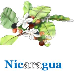 Layout Nicaragua washed