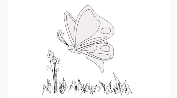 how-to-draw-a-butterfly_04_a