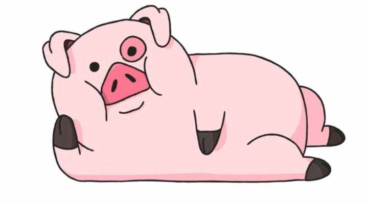 how-to-draw-a-pig_04