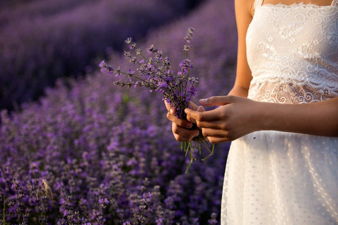 lavender infused beauty products