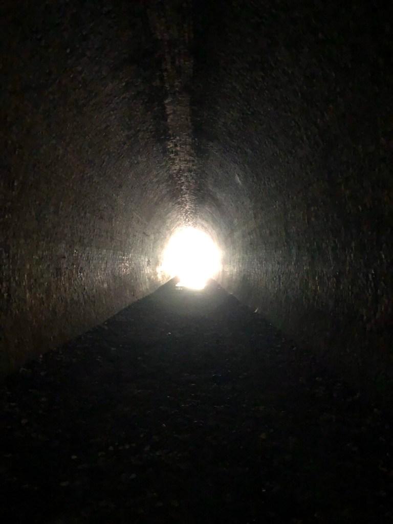 the mushroom tunnel