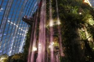 CloudForest 室内の滝