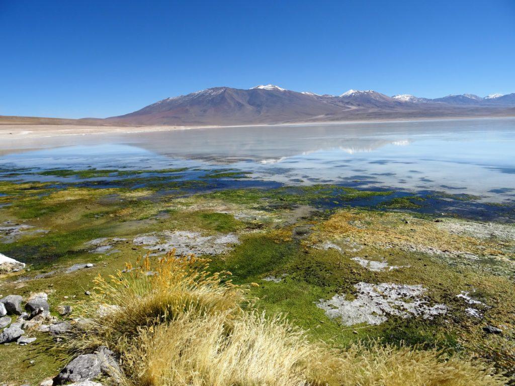 Chili San Pedro de Atacama