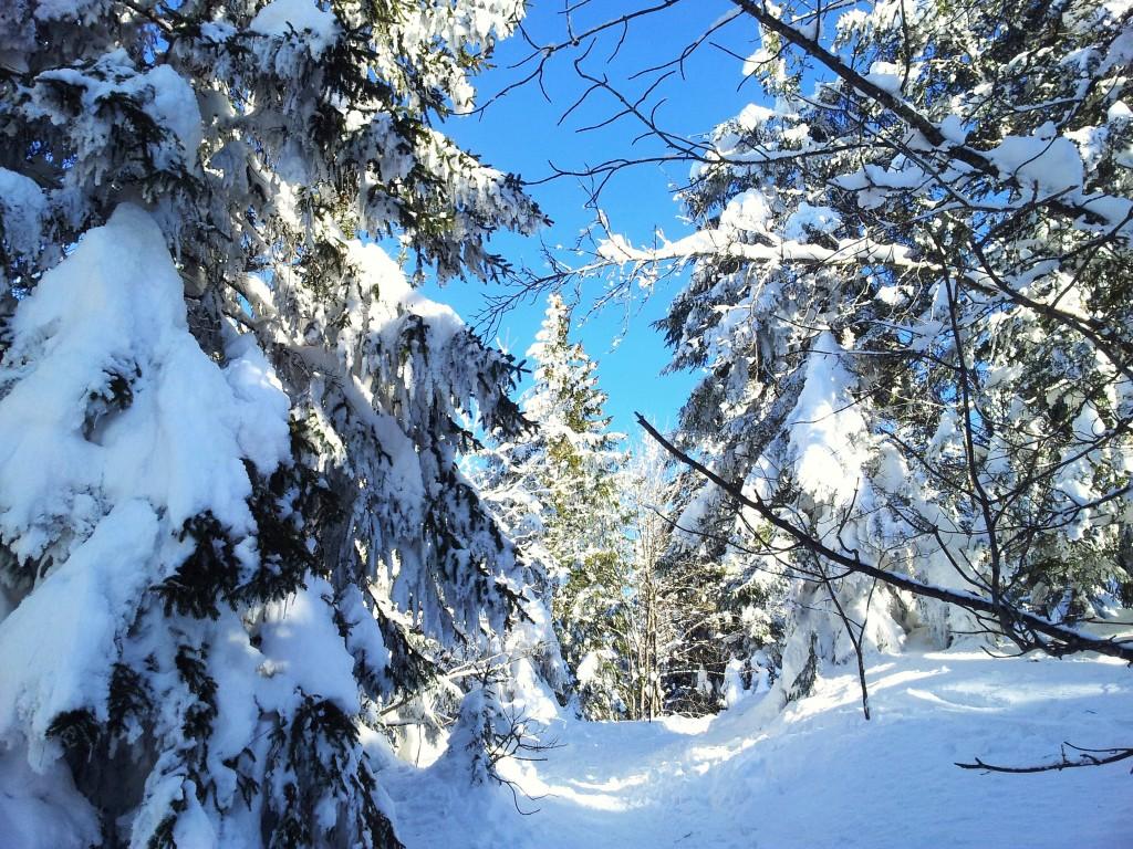 Week end au Semnoz en Haute Savoie