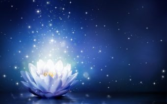 lotus-flower-in-hinduism-and-buddhism-1024x640