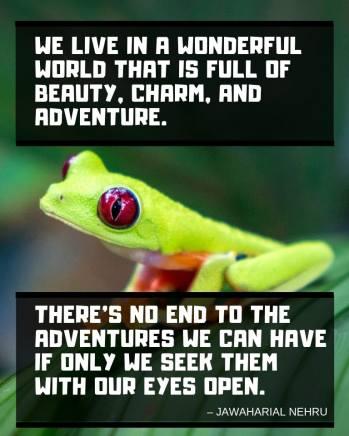 nehru-inspirational-travel-quote