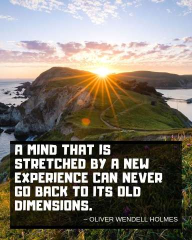 oliver-wendell-holmes-trip-quote