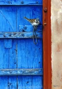 1143-sparrow-rajasthan-door.jpg-nggid041377-ngg0dyn-200x300x100-00f0w010c010r110f110r010t010