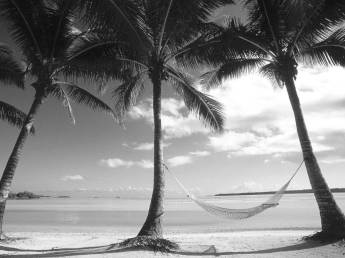 224-2244156_black-and-white-photos-of-the-beach
