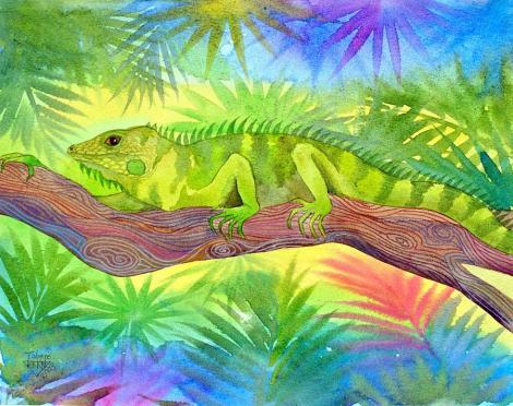 iguana-jennifer-baird