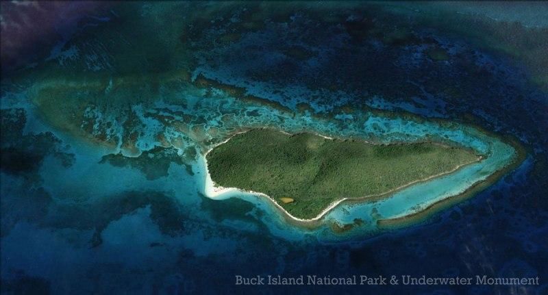Buck Island St Croix Snorkeling Beaches