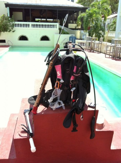 Scuba gear for lionfish hunting course