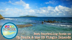 Best Snorkeling St Croix Virgin Islands