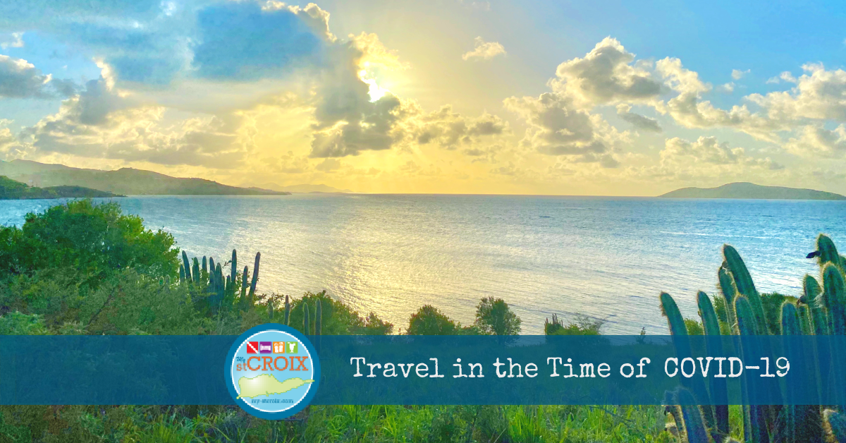 Travel in the Time of COVID-19 header